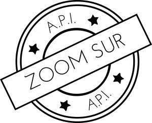 logo API tampon zoom sur